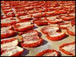 pomodori-secchi1